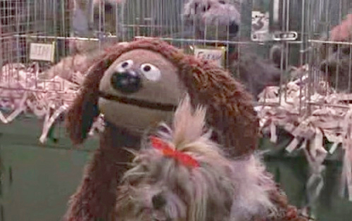 Rowlf vs. Other Muppet Dogs