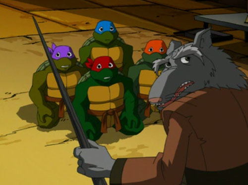Splinter Teaching