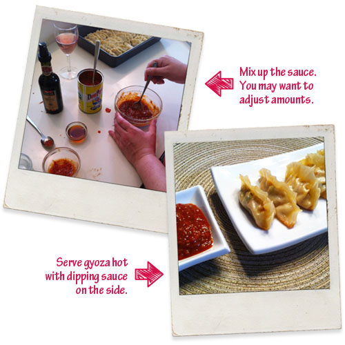 Mix dipping sauce together and serve with gyoza.